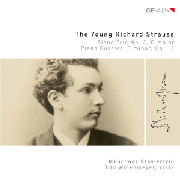 Cover: The Young Richard Strauss