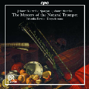 Cover: The Mystery of the Natural Trumpet